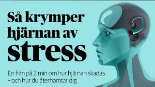 Stress på svenska